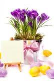 Bunte gemalte Ostereier und Frühlingsblumen Stockfoto