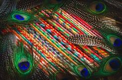 Bunte gemalte Stöcke und heller abstrakter Hintergrund der Vogelfedern lizenzfreie stockfotografie