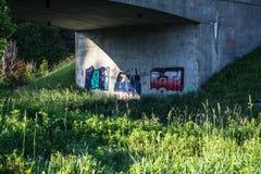 Bunte Graffiti unter Brücke Stockbilder