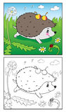 Bunte grafische Abbildung Illustration des Igelen und des Marienkäfers für Kinder Lizenzfreies Stockfoto