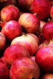 Bunte Granatäpfel, ausführliche Ansicht Lizenzfreie Stockfotos