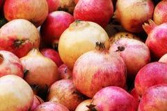 Bunte Granatäpfel, ausführliche Ansicht Lizenzfreie Stockfotografie