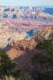 Bunte Grand- Canyonlandschaft Stockfotos