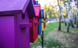 Bunte Häuser für Vögel Bunte Häuser für Vögel Stockbild