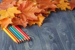Bunte hölzerne Bleistifte mit Herbst treibt auf Holztisch Blätter Stockbild
