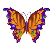 Bunte helle Schmetterlinge des Vektors Stockbild