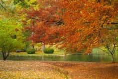 Bunte Herbst-Landschaft Stockbilder