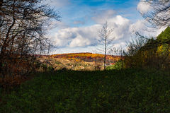 Bunte Herbst-Landschaft Feld des grünen Grases gegen einen blauen Himmel mit wispy weißen Wolken Stockbild