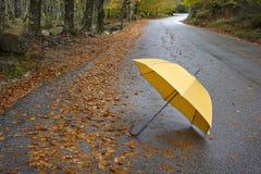 Bunte Herbstbäume und -regenschirm Lizenzfreies Stockbild