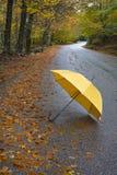 Bunte Herbstbäume und -regenschirm auf Landstraße Lizenzfreie Stockfotografie