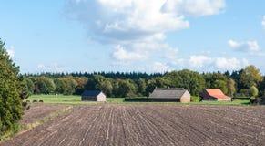 Bunte Herbstlandschaft in den Niederlanden Stockfotografie