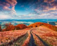 Bunte Herbstlandschaft mit Straße des alten Landes Stockfoto