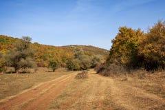 Bunte Herbstszene stockbild