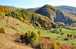 Bunte Herbstwaldberglandschaft Stockfotos