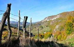 Bunte Herbstwaldberglandschaft Stockbilder