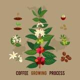 Bunte Illustration einer Kaffeeniederlassung Stockfoto