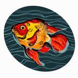 Bunte Illustration von Fischen 3 lizenzfreie abbildung