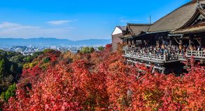 Bunte Jahreszeit Kyoto im Herbst Lizenzfreie Stockbilder