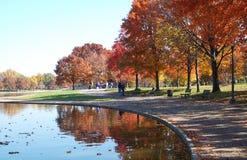 Bunte Jahreszeiten: Reflektierendes P Lizenzfreie Stockbilder