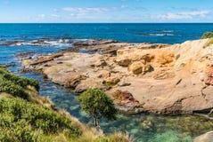 Bunte Küstenlandschaft Neuseelands Lizenzfreie Stockbilder