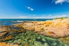 Bunte Küstenlandschaft Neuseelands Stockfotografie