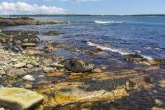 Bunte Küstenlinienszene - Acadia Lizenzfreies Stockfoto