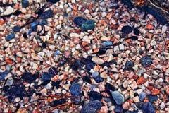 Bunte Kiesel des Süßwassers der Kaulquappen Stockfotografie