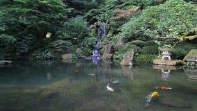 Bunte Koi-Fischschwimmen in einem Teich mit Wasserreflexion im japanischen Garten 1080p stock video
