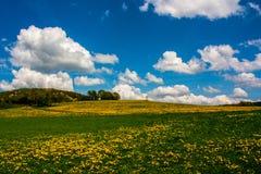 Bunte Landschaft Stockfotos