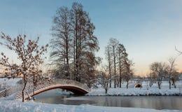 Bunte Landschaft bei dem Wintersonnenaufgang im Park Stockfotografie
