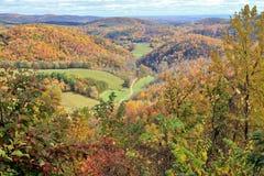 Bunte Landschaft des Herbstes Stockbilder