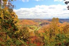 Bunte Landschaft des Herbstes Stockfotografie