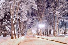 Bunte Landschaft des Winters - Wintergasse im Park mit eisigen Bäumen des Winters und hellen Laternen Stockfotografie