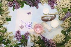 Bunte lila Niederlassungen auf einem blauen Hintergrund mit Saft, Hautpflege sahnt, desodorierendes Mittel und Gl?ser, flache Lag stockfotos