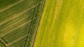 Bunte Muster auf den Erntegebieten am Ackerland, Vogelperspektive, Brummenfoto lizenzfreie stockbilder
