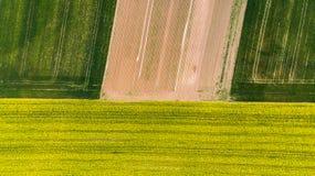 Bunte Muster auf den Erntegebieten am Ackerland, Vogelperspektive, Brummenfoto stockbild