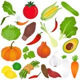 Bunte nette Vektorikonen: Früchte, Gemüse, f Stockfoto
