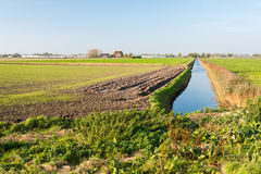 Bunte niederländische ländliche Landschaft im Herbst Stockfotos