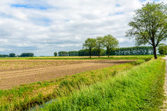 Bunte niederländische ländliche Polderlandschaft in der Sommerzeit Lizenzfreie Stockbilder