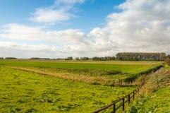 Bunte niederländische Polderlandschaft im Herbst Stockbild