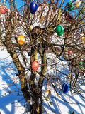 Bunte Ostereier auf Frühlingsbaum Stockbilder