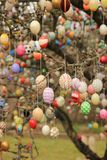 Bunte Ostereier auf dem Baum lizenzfreie stockbilder