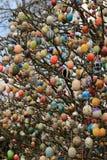 Bunte Ostereier auf dem Baum lizenzfreies stockbild