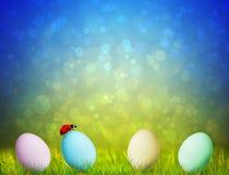 Bunte Ostereier auf grünem Gras mit einem ladybu stockbild