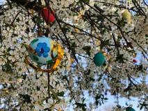Bunte Ostereier gehangen an einen Baum lizenzfreie stockfotografie