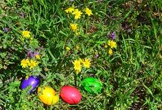 Bunte Ostereier im grünen Gras Lizenzfreies Stockbild