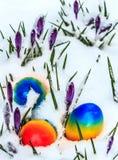 Ostereier im Schnee Stockfotos