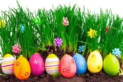 Bunte Ostereier mit Frühlingsgras und -dekoration Stockfotografie