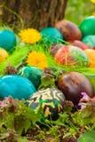 Bunte Ostereier ordneten draußen in den Blumen an Stockfoto