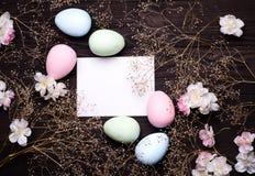 Bunte Ostereier und Blumen Lizenzfreie Stockfotografie
